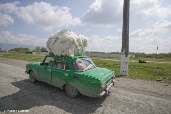 Tajikistan - A car covered with cotton.
